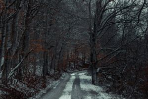 Snowy Mountain Road by UriahGallery