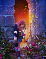 Toner Violin by Euselia