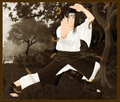 Hyuuga Neji by ART-havoc