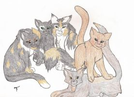 WindClan Apprentices by Simatra