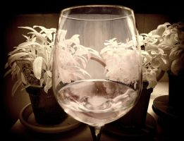 Glas of red wine infrared by MichiLauke
