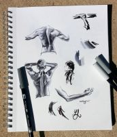 Ink Studies by desertxue