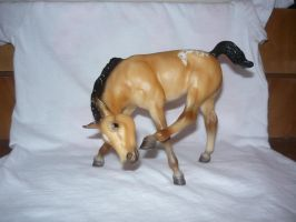 Breyer 1 by EumyCookie