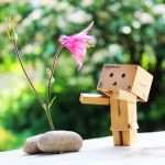 Fascinated Danbo by Kara-a