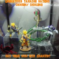 Unknown Shenron/Shenlong from Tamashii Nations by GIGAN05