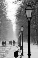Winter in Maksimir Park XX by hrvojemihajlic