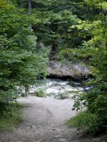 Nature_Scape_rapids forest by Aimelle-Stock