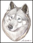 Wolf Head 1 - Print by Bright-Raven