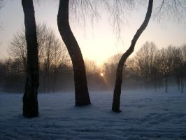 Winter in germany by Mathi-das-M