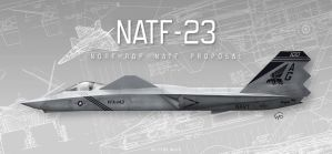 Northrop's NATF-23 by fighterman35
