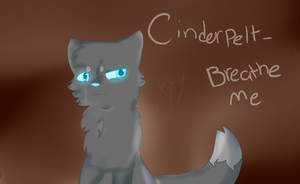 Cinderpelt AMV intro image by chlckadee