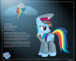 General Rainbow Dash - profile info by A4R91N