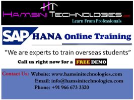 SAP HANA Online Training in Hyderabad, India by ramseo
