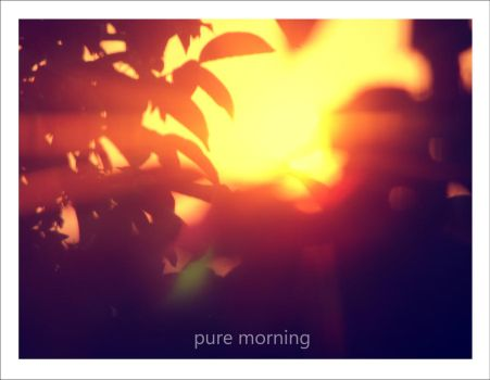 Pure Morning by fiule