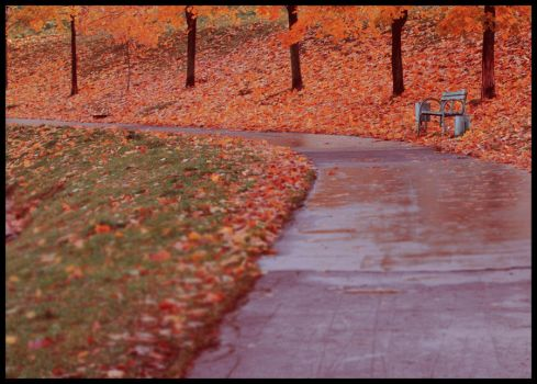 bench by suo-f