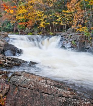 Fall on the Oxtongue by JohnMeyer