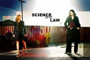 Rizzoli and Isles: Science and Law by bubblenubbins