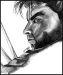 Wolverine by Sargon-The-Dark