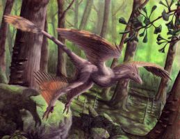 Microraptor gui by EWilloughby