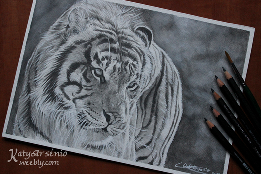 Sumptuous - Tiger Drawing (+ video) by Katy500