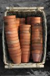 plant pots in a basket. by Sad-Fantasy