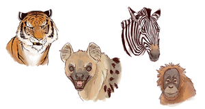 So I Had To Draw The Animals From Life of Pi by Isolated-Scetch