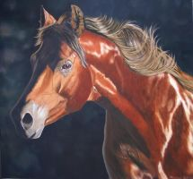 ME..AFTER THE GALOP by Mendrinos