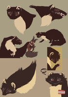 pine marten character concepts by SulphurSpoon