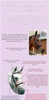 Tutorial - Horse Harness by Amaltheren