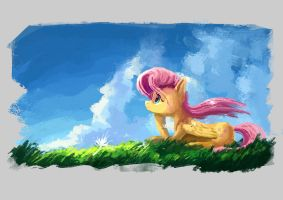 For Fluttershy Day by Plainoasis
