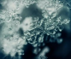 Snow flake by ArchWorks