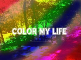 Color My Life by LovelyDreamer3192012