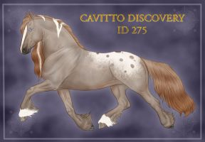 Cavitto Discovery ID 275 by VAngelLJ