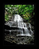 Sherman Falls by angelicque