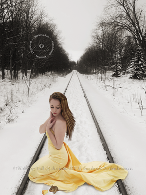 Tracks In The Snow - I by Walking-Tall