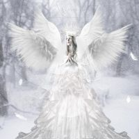 The snow Angel by annemaria48
