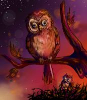Owls in pink by Shadow-insomnia