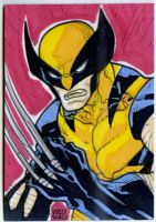 Wolverine PSC commission by mdavidct