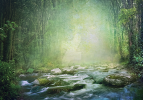 PREMIUM background - Old forest_blue by Euselia