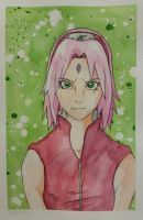 Sakura: Complementary Color Study by DragFairy