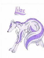-Lilac- by paradox--division