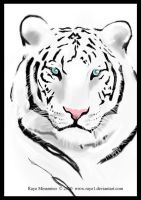 ::White Tiger:: by raye-minamino