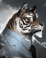 Tiger by brownmuscle