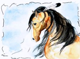 Native American Horse by TopazBlitz