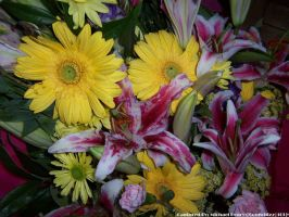 Mixed Flowers 3 by comwhizz101
