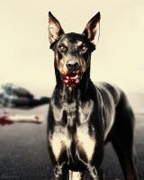 Portrait of the Damned_ Dobermann by KYghost