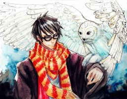 Harry Potter by darkredmaplesword