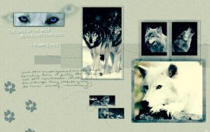 Wolf Wallpaper by For-Always