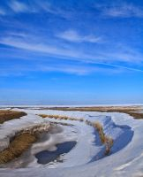 Spring Thaw by pullingcandy