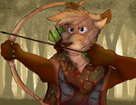 Bow and arrow by Boonnie